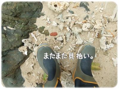 2012_01090017.jpg