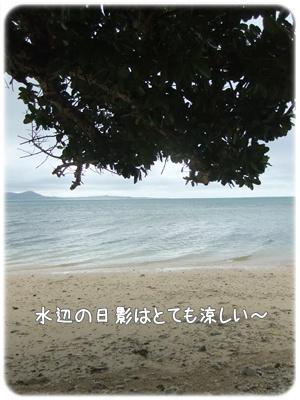 2012_01090020.jpg