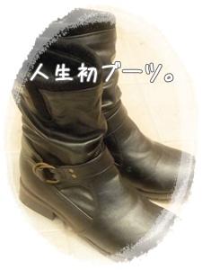 2012_01140009.jpg