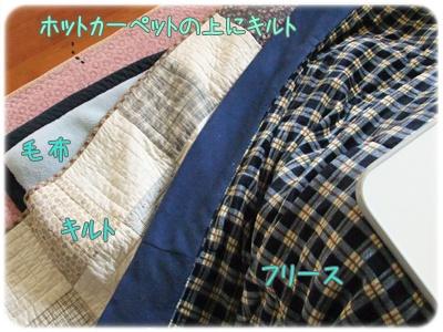 2012_01250003.jpg