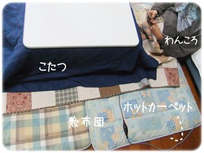 2012_02270017.jpg