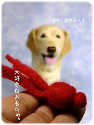 2012_05180011.jpg