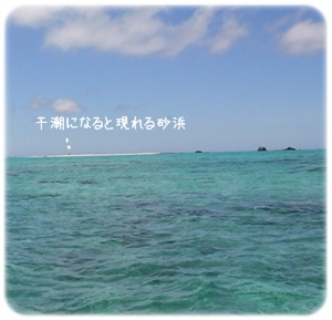 2012_07010035.jpg