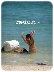 2012_09020024.jpg