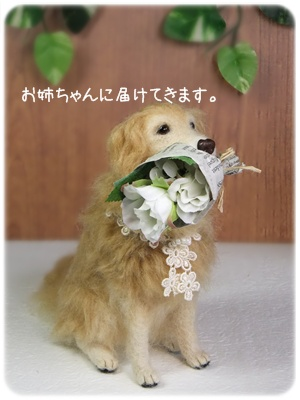 2012_09220012.jpg