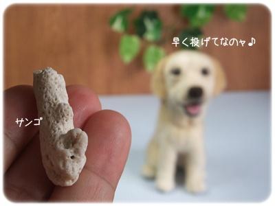 2012_10270039.jpg