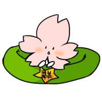 羽桜ヨシノ(うさくらよしの)