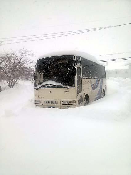 bus260119.jpg