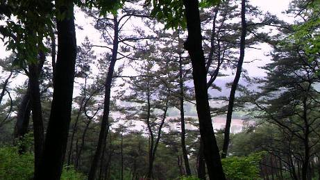半月楼から眺めた白馬江の眺め